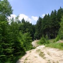 Alte Bobbahn