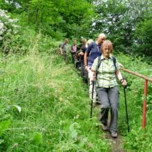 Abstieg zur Bodebrücke1
